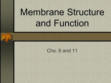 Membrane Structure and Function Chs. 8 and 11. Cell Membrane – Introduction Separates the living cell from its nonliving surroundings 8 nm thick Controls.