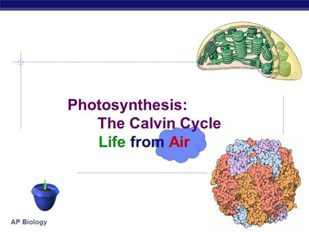AP Biology 2007-2008 Photosynthesis: The Calvin Cycle Life from Air.