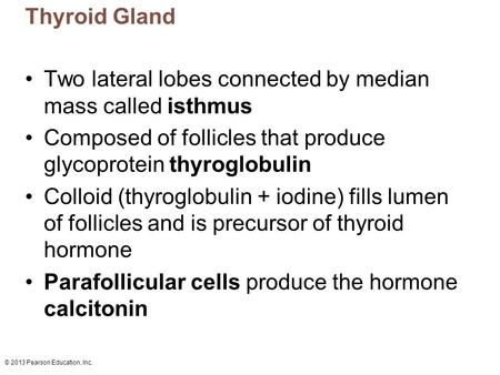 © 2013 Pearson Education, Inc. Thyroid Gland Two lateral lobes connected by median mass called isthmus Composed of follicles that produce glycoprotein.