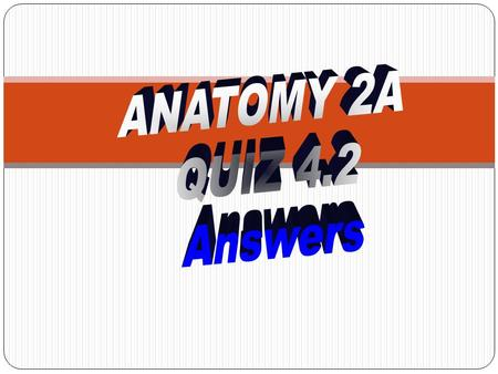 ANATOMY 2A QUIZ 4.2 Answers.
