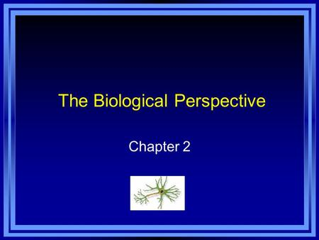 The Biological Perspective Chapter 2. Copyright © 2011 Pearson Education, Inc. All rights reserved. Chapter 2 Learning Objective Menu LO 2.1 What are.