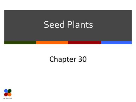 Seed Plants Chapter 30. Slide 2 of 18 Seed Plants Gymnosperms vs Angiosperms Gymnosperms 3 Major evolutionary changes in gymnosperms Further decrease.