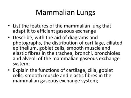 Mammalian Lungs List the features of the mammalian lung that adapt it to efficient gaseous exchange Describe, with the aid of diagrams and photographs,