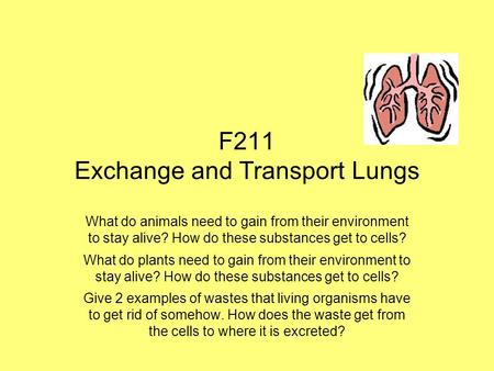 F211 Exchange and Transport Lungs What do animals need to gain from their environment to stay alive? How do these substances get to cells? What do plants.