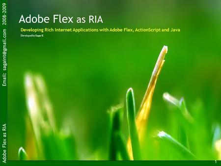 Adobe Flex as RIA   2008-2009 1 Adobe Flex as RIA Developed by Sagar K Developing Rich Internet Applications with Adobe Flex, ActionScript.
