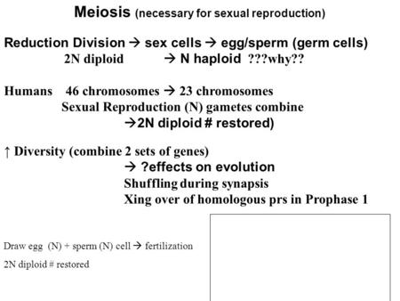 Meiosis (necessary for sexual reproduction) Reduction Division sex cells egg/sperm (germ cells) 2N diploid N haploid ???why?? Humans 46 chromosomes 23.