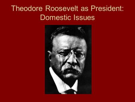 Theodore Roosevelt as President: Domestic Issues.