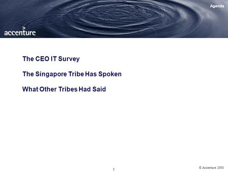 14 th CIO Workshop July 27th, 2001 CEO IT Survey Findings.