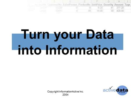 Copyright InformationActive Inc. 2004 Turn your Data into Information.