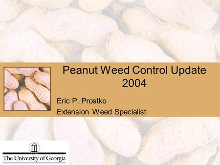 Peanut Weed Control Update 2004 Eric P. Prostko Extension Weed Specialist.