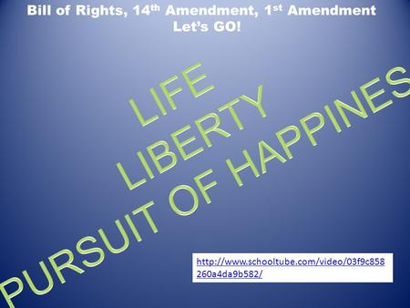 LIBERTY PURSUIT OF HAPPINESS