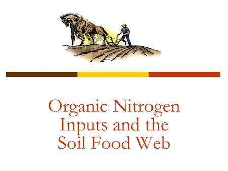 Organic Nitrogen Inputs and the Soil Food Web. 2 What is the Soil Food Web? Interaction and combination of all the organisms in the soil. Made up of an.