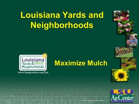 Louisiana Yards and Neighborhoods Maximize Mulch www.lsuagcenter.com/lyn.