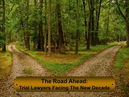 The Road Ahead : Trial Lawyers Facing The New Decade.
