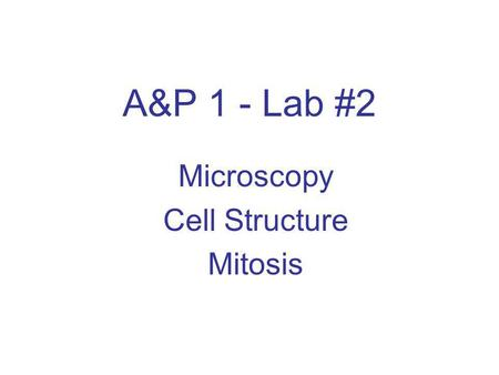 A&P 1 - Lab #2 Microscopy Cell Structure Mitosis.