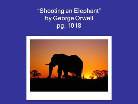 shooting an elephant summary