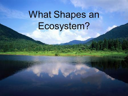 What Shapes an Ecosystem?. Biotic Factors – living/biological influences on organisms within an ecosystem. –Examples? Abiotic Factors – physical/non-living.