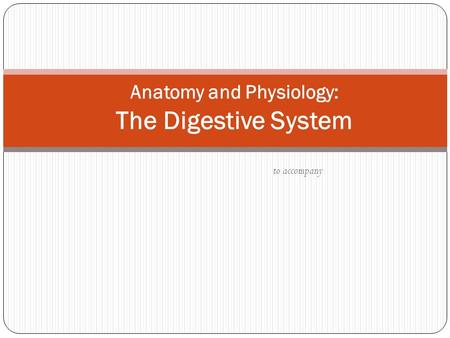 To accompany Anatomy and Physiology: The Digestive System.