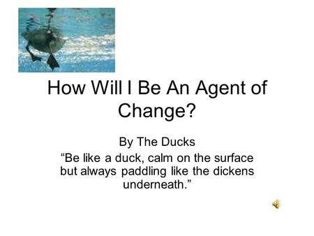How Will I Be An Agent of Change? By The Ducks Be like a duck, calm on the surface but always paddling like the dickens underneath.