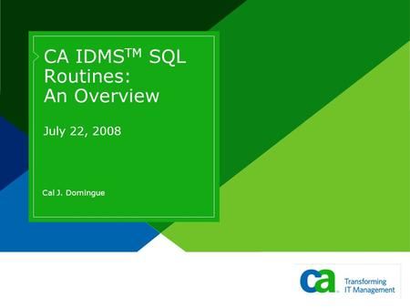 CA IDMS TM SQL Routines: An Overview July 22, 2008 Cal J. Domingue.
