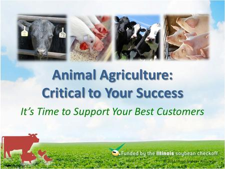 Animal Agriculture: Critical to Your Success Its Time to Support Your Best Customers © 2012 Illinois Soybean Association.