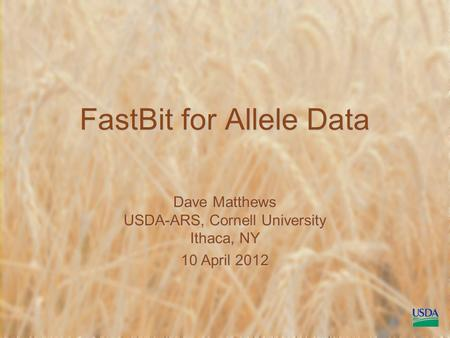 FastBit for Allele Data Dave Matthews USDA-ARS, Cornell University Ithaca, NY 10 April 2012.