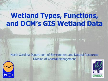 January 2002 Wetland Types, Functions, and DCMs GIS Wetland Data North Carolina Department of Environment and Natural Resources Division of Coastal Management.