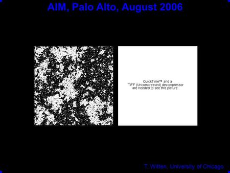 AIM, Palo Alto, August 2006 T. Witten, University of Chicago.