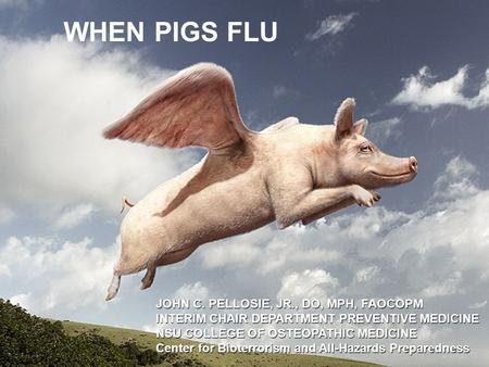1 WHEN PIGS FLU JOHN C. PELLOSIE, JR., DO, MPH, FAOCOPM INTERIM CHAIR DEPARTMENT PREVENTIVE MEDICINE NSU COLLEGE OF OSTEOPATHIC MEDICINE Center for Bioterrorism.