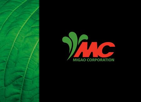 MIGAO CORPORATION PRESENTATION 1. MIGAO CORPORATION PRESENTATION 2 Forward looking statement The contents of this presentation contain statements that.