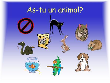 As-tu un animal? Un chien Un lapin Un poisson.