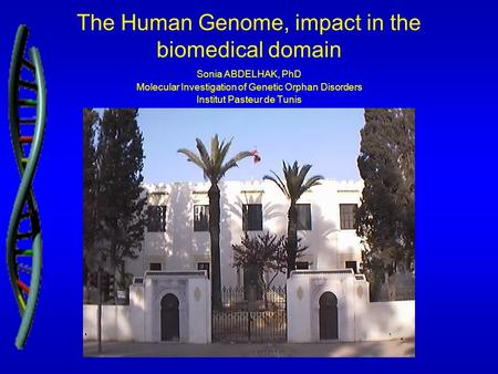 The Human Genome, impact in the biomedical domain Sonia ABDELHAK, PhD Molecular Investigation of Genetic Orphan Disorders Institut Pasteur de Tunis.