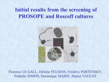 Initial results from the screening of PROSOPE and Roscoff cultures Florence LE GALL, Héloïse FELMAN, Frédéric PARTENSKY, Nathalie SIMON, Dominique MARIE,