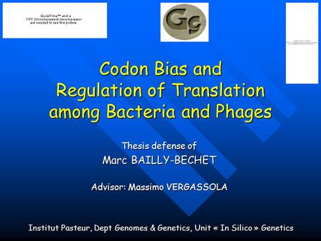 Codon Bias and Regulation of Translation among Bacteria and Phages