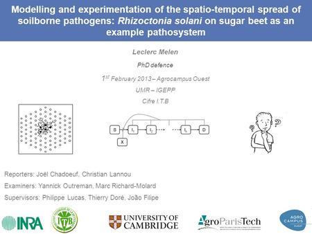 Modelling and experimentation of the spatio-temporal spread of soilborne pathogens: Rhizoctonia solani on sugar beet as an example pathosystem Leclerc.