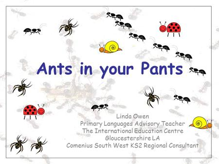 Ants in your Pants Linda Owen Primary Languages Advisory Teacher The International Education Centre Gloucestershire LA Comenius South West KS2 Regional.