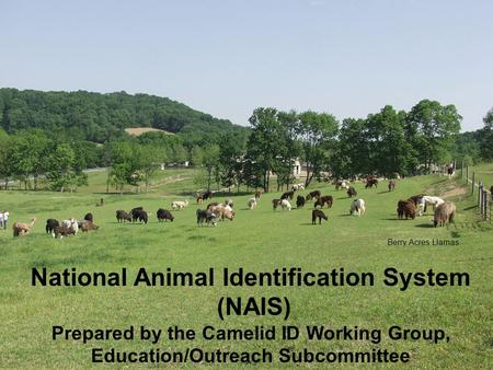 National Animal Identification System (NAIS)