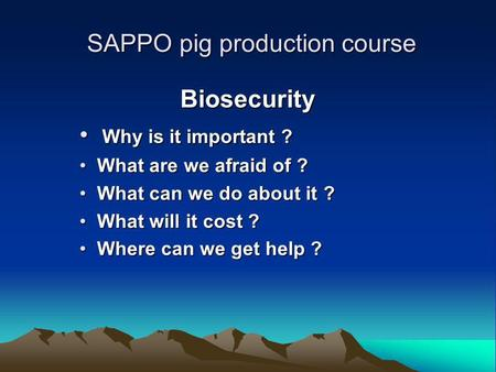 SAPPO pig production course