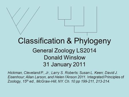 Classification & Phylogeny