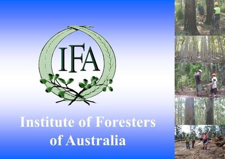 Institute of Foresters