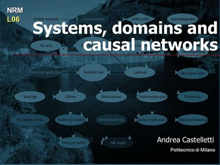 Systems, domains and causal networks Andrea Castelletti Politecnico di Milano NRML06.