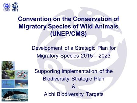 Development of a Strategic Plan for Migratory Species 2015 – 2023