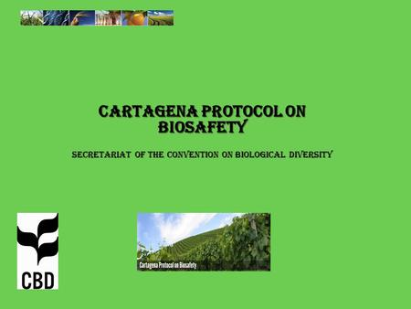 Cartagena Protocol on Biosafety Secretariat of the Convention on Biological Diversity.
