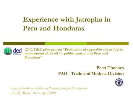 Experience with Jatropha in Peru and Honduras CFC/DED pilot project Production of vegetable oils as fuel in replacement of diesel for public transport.