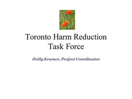 Toronto Harm Reduction Task Force Holly Kramer, Project Coordinator.