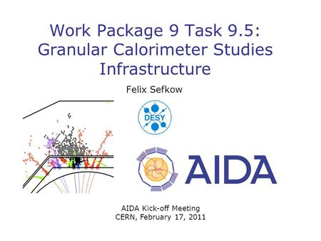 Work Package 9 Task 9.5: Granular Calorimeter Studies Infrastructure Felix Sefkow AIDA Kick-off Meeting CERN, February 17, 2011.