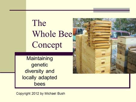 The Whole Bee Concept Maintaining genetic diversity and locally adapted bees Copyright 2012 by Michael Bush.