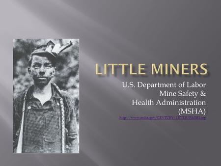 U.S. Department of Labor Mine Safety & Health Administration (MSHA)