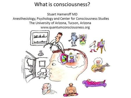 What is consciousness? Stuart Hameroff MD Anesthesiology, Psychology and Center for Consciousness Studies The University of Arizona, Tucson, Arizona www.quantumconsciousness.org.