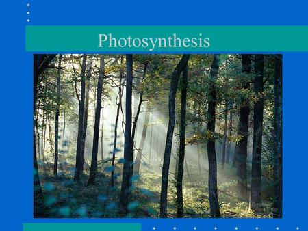 Photosynthesis. Photosynthesis in nature Autotrophs: biotic producers; photoautotrophs; chemoautotrophs; obtains organic food without eating other organisms.